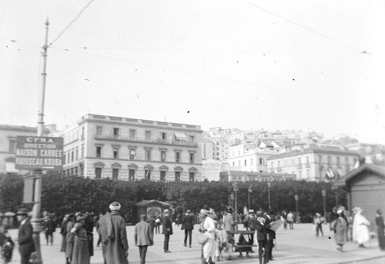 Place du gouvernement, les lignes de tramway