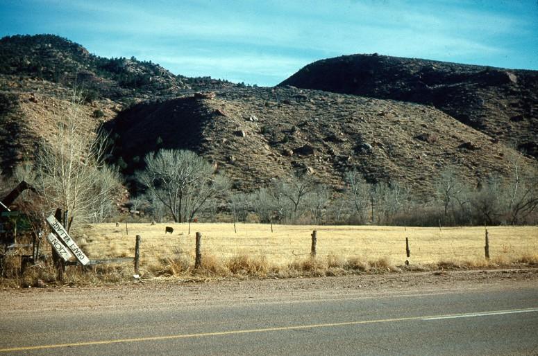 Zion - Utah