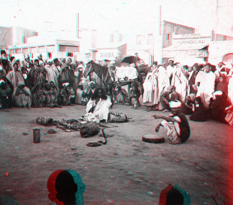 Marrakech : charmeurs de serpents