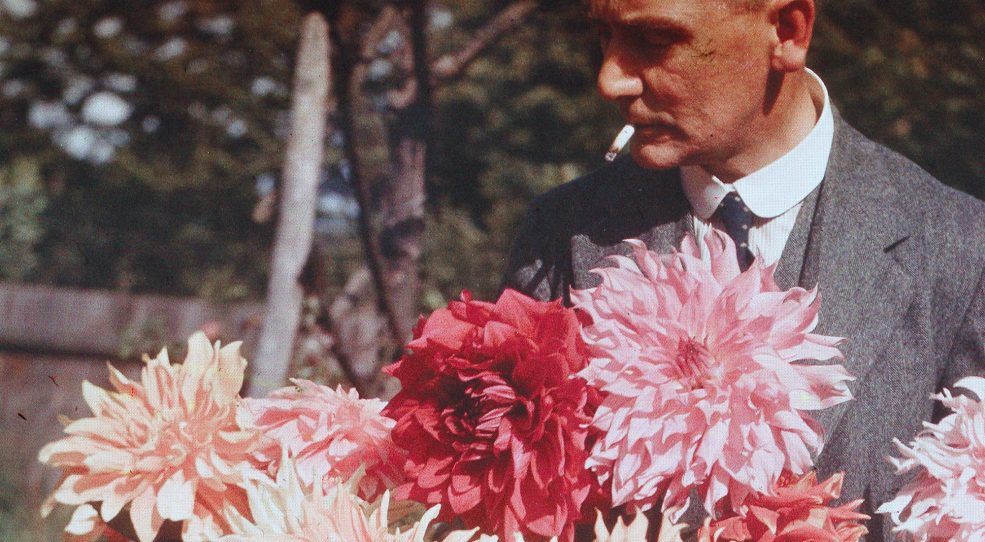 Dufaycolor, le film couleur d'Ilford